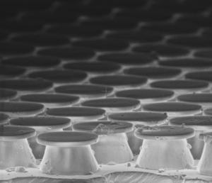 A close-up of the robot's feet.