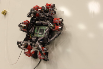 Wall crawler robot