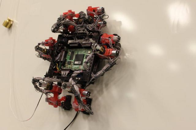 Wall crawler robot