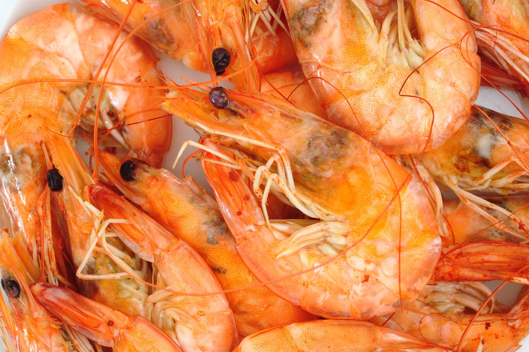 prawns, shrimps
