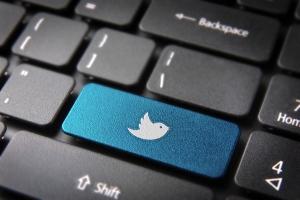 Blue keyboard twitter bird key