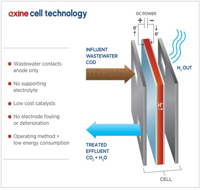 Axine_CellTechnology