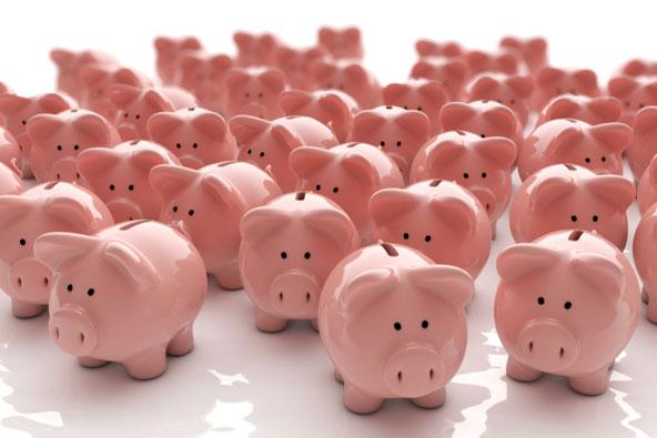crowdfunding-pigs