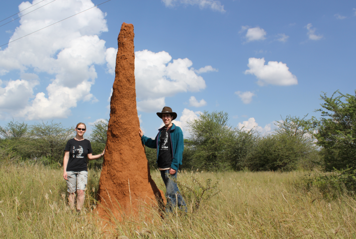 Harvard graduate student Kirstin Petersen and staff scientist Justin Werfel with a termite mound in Namibia. Photo courtesy of the Self-Organizing Systems Research Group, Harvard SEAS.