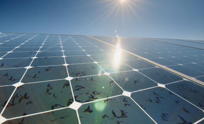 Apple solar