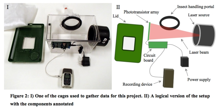 The setup used to measure the insects' data.