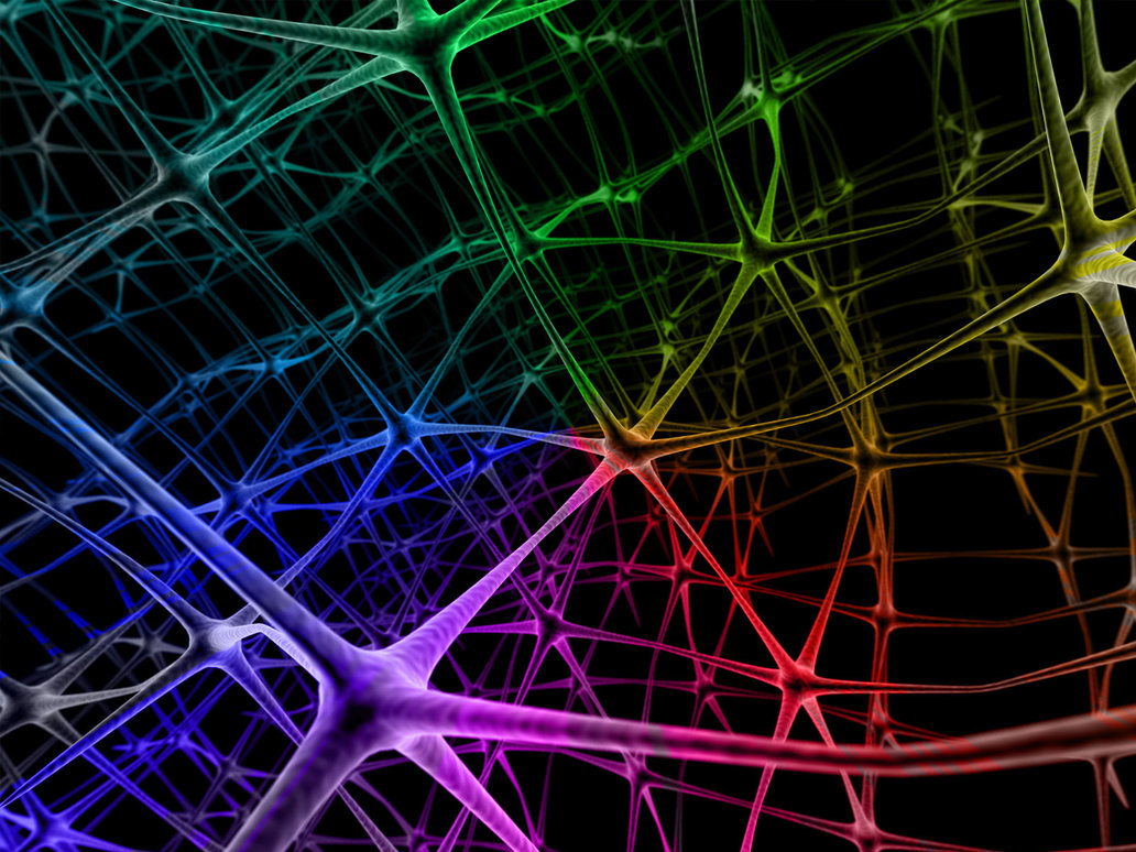 the_neural_network2_by_rajasegar-d2xx41q