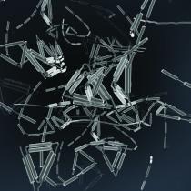 Autodesk_ProjectCyborg_image-04