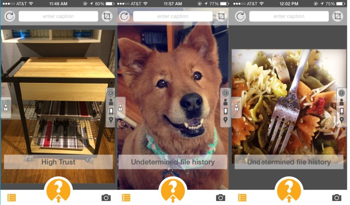 I uploaded an original image of a kitchen cart, a screenshot of my dog and an Instagrammed photo of some pasta. Izitru only verified my original image.