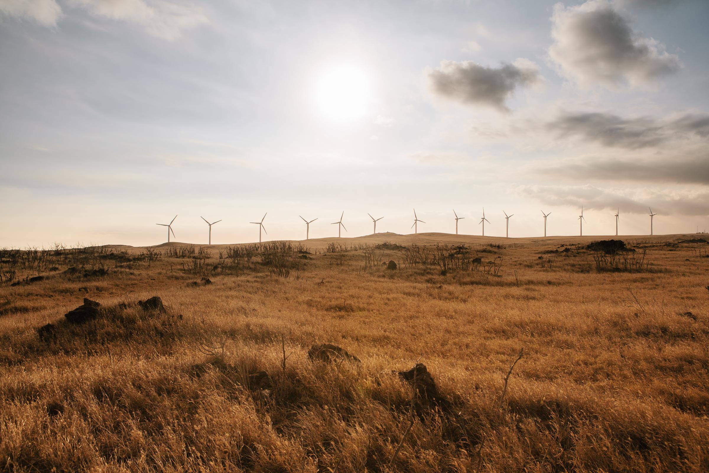 Wind turbines in Hawaii