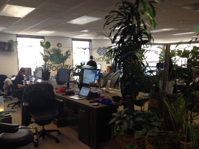 Docker team members working in their floral-heavy office