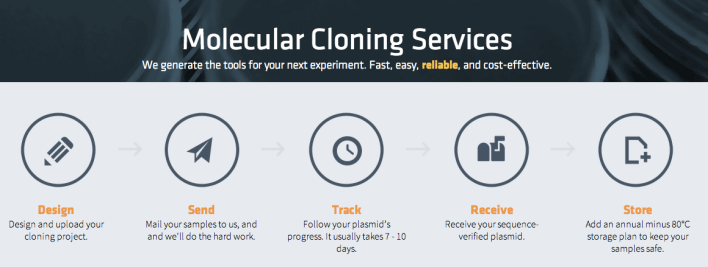 The molecular cloning process with Transcriptic.