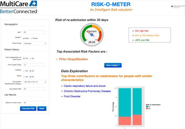 A screenshot of a Risk-O-Meter online demonstration.