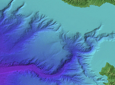 The Monterey Canyon, image courtesy of DeepWater Desal.