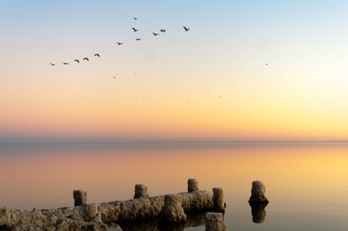The view off of Bombay Beach, image courtesy of Justin Kerr Sheckler, Flickr Creative Commons.