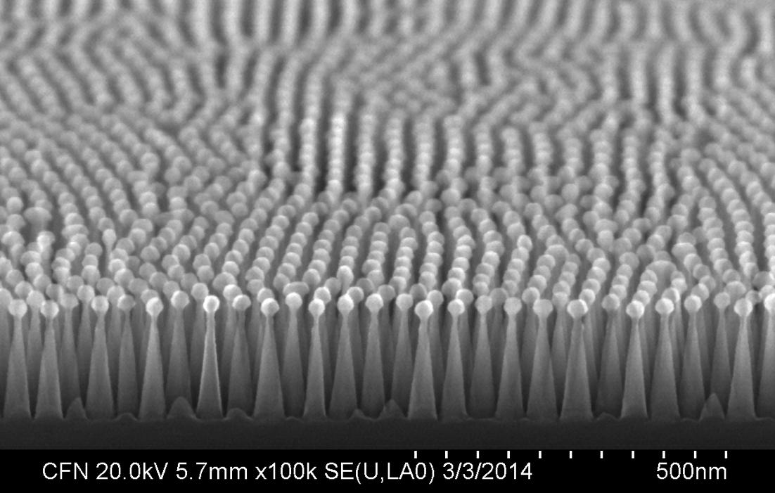 Details of the nanotextured antireflective surface as revealed by a scanning electron microscope at the Center for Functional Nanomaterials. The tiny posts, each smaller than the wavelengths of light, are reminiscent of the structure of moths' eyes, an example of an antireflective surface found in nature.