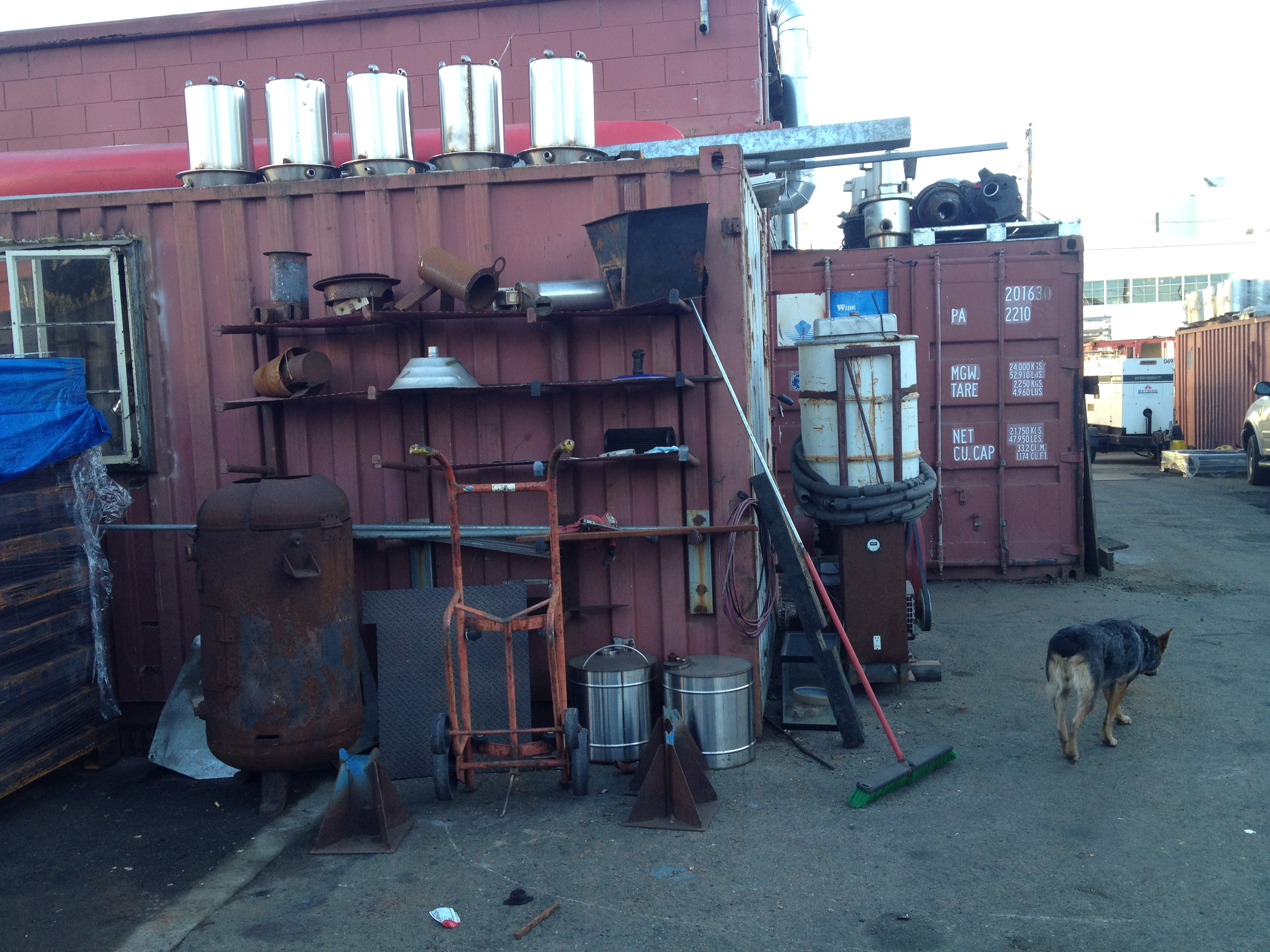 All Power Labs works out of a 11,000 square foot former artist collective space, in Berkeley, Calif., filled with shipping containers. Dog Dulie wanders around the space.