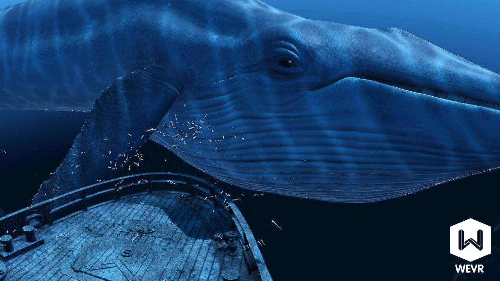 A blue whale floats past in WEVR's theBlu.